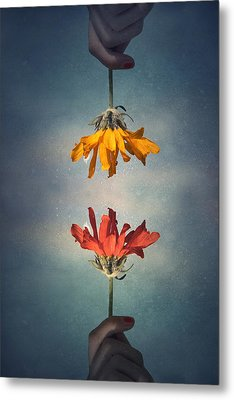 Middle Ground Metal Print by Tara Turner