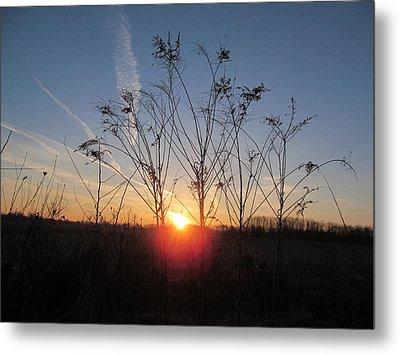 Middle Of The Field Sunrise Metal Print