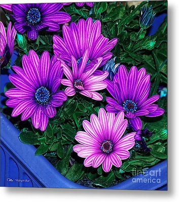 Midnight Blue Metal Print by Mo T