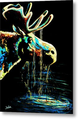 Midnight Moose Drool  Metal Print