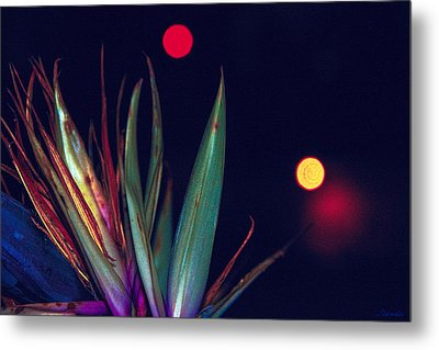 Midnight Reach Metal Print