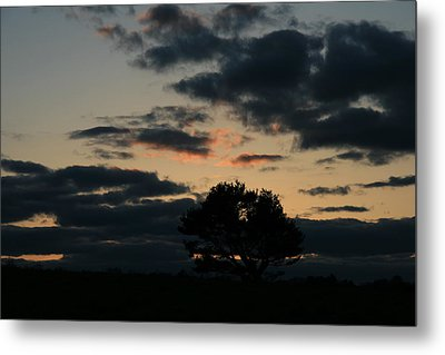 Metal Print featuring the photograph Farm Pasture Midnight Sun  by Neal Eslinger