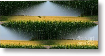 Midwest Gold Metal Print by Luther Fine Art