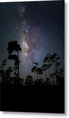 Milky Way Over The Everglades Metal Print by Andres Leon