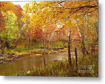 Metal Print featuring the photograph Mill Creek 1 by Jim McCain