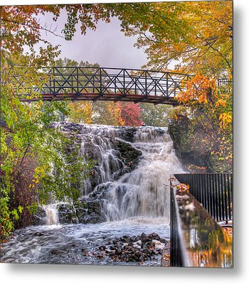 Mill Pond Park Metal Print