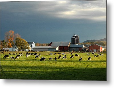 Metal Print featuring the photograph Miller Farm by Paul Miller