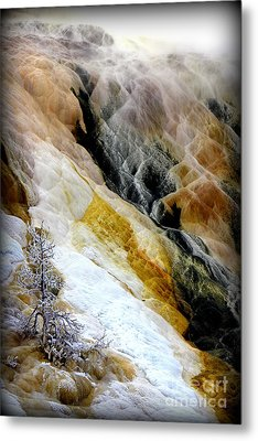 Minerals And Stream Metal Print by C Ray  Roth