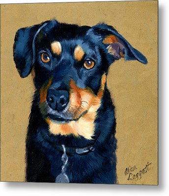 Miniature Pinscher Dog Painting Metal Print by Alice Leggett