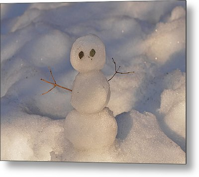 Miniature Snowman Landscape Metal Print by Nancy Landry