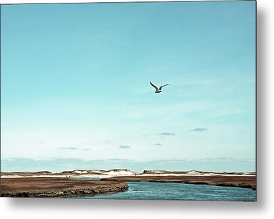 Minimalist Blue And Brown Seascape Metal Print by Brooke T Ryan