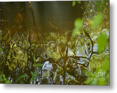 Minnow Creek Metal Print by Russell Christie