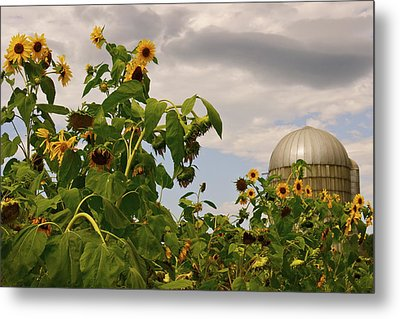 Metal Print featuring the photograph Minot Farm by Alice Mainville