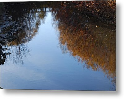 Metal Print featuring the photograph Mirror Image by Ramona Whiteaker