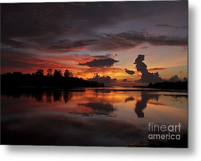 Metal Print featuring the photograph Mirror Of Nature by Gary Bridger