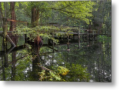 Mirror To The Soul Metal Print by Debra and Dave Vanderlaan