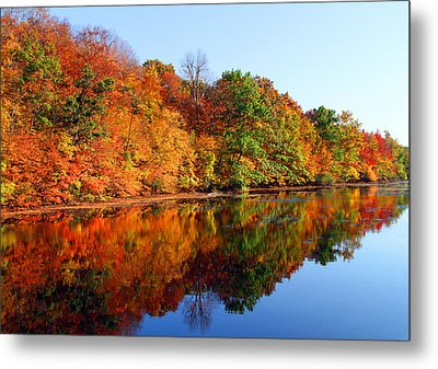 Mirrored Palette Metal Print by James Hammen