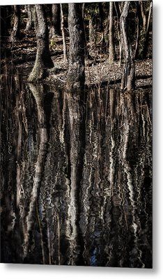 Metal Print featuring the photograph Mirrored Trees by Zoe Ferrie
