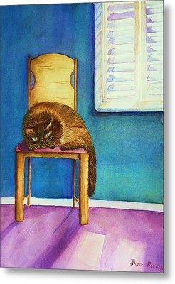 Kitty's Nap Metal Print
