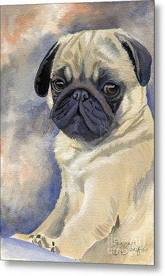 Miss Puggles Metal Print by Suzanne Schaefer