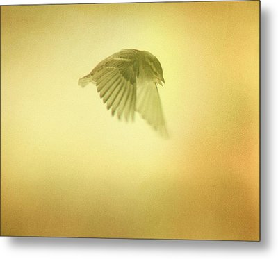 Mission Metal Print by Gothicrow Images