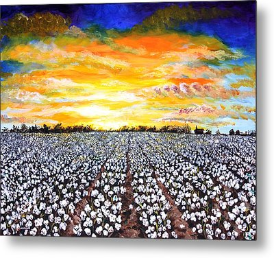 Mississippi Delta Cotton Field Sunset Metal Print