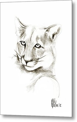Missouri Mountain Lion II Metal Print by Kip DeVore