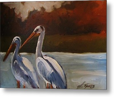 Missouri River Pelicans Metal Print by Suzanne Tynes