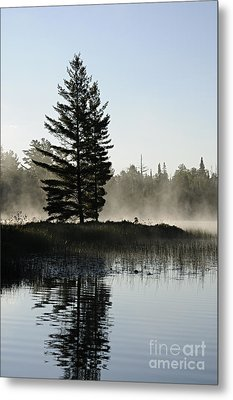 Mist And Silhouette Metal Print by Larry Ricker