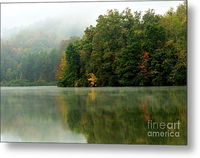 Mist On The  Lake Metal Print by Thomas R Fletcher
