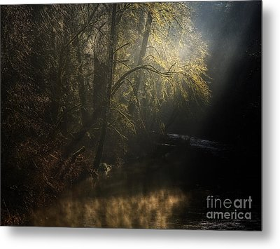 Metal Print featuring the photograph Misty Creek by Inge Riis McDonald