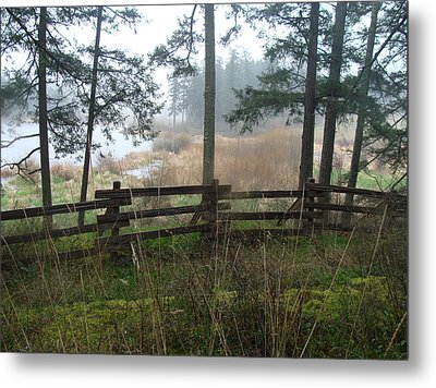 Metal Print featuring the photograph Misty Flats by Cheryl Hoyle