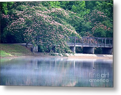 Misty Mimosa Reflections Metal Print by Maria Urso