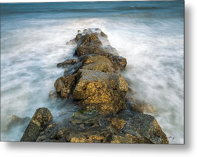 Misty Moment Metal Print by Bill Cantey