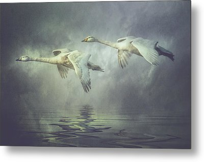 Metal Print featuring the photograph Misty Moon Shadows by Brian Tarr