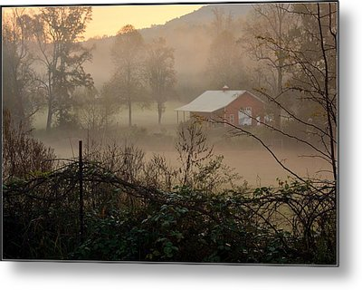 Misty Morn And Horse Metal Print