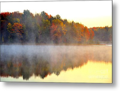 Misty Morning At Stoneledge Lake Metal Print by Terri Gostola