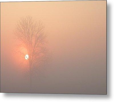 Misty Morning Metal Print by Carlee Ojeda