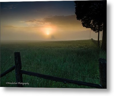Misty Morning Hop Metal Print by Paul Herrmann