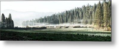 Misty Morning In Yosemite Metal Print by Jane Rix
