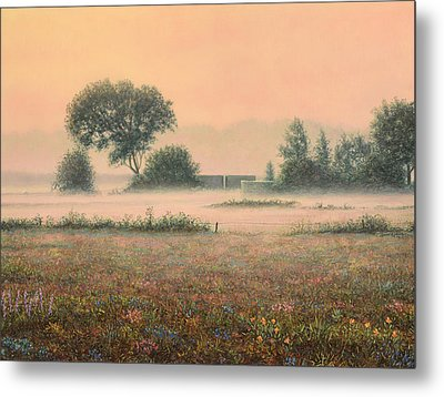 Misty Morning Metal Print by James W Johnson