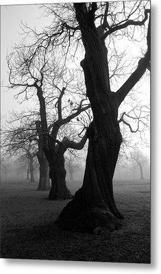 Misty Morning Metal Print by Mark Rogan