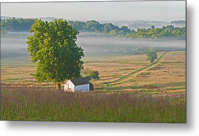 Misty Morning Metal Print by Michael Porchik