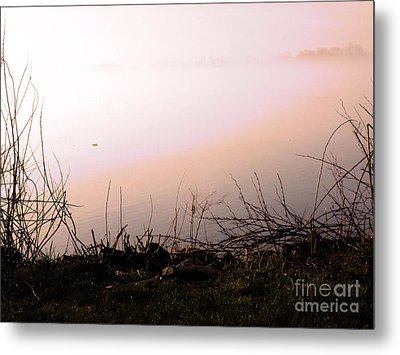 Metal Print featuring the photograph Misty Morning by Robyn King