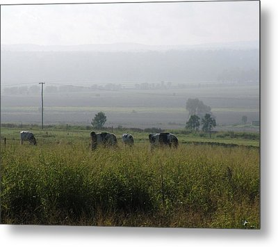 Metal Print featuring the photograph Misty Morning by Therese Alcorn