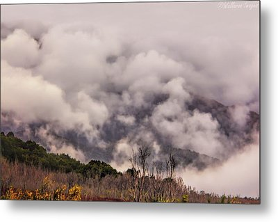 Metal Print featuring the photograph Misty Mountains by Wallaroo Images