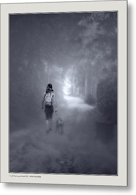 Metal Print featuring the photograph Misty Path by Pedro L Gili