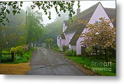 Misty Pink Metal Print by Andrew Middleton