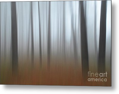 Metal Print featuring the photograph Misty Thoughts by Simona Ghidini