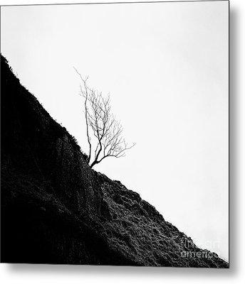 Misty Tree Glen Etive Metal Print by John Farnan